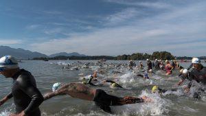 Sportfotos als Schwimmfoto beim Start